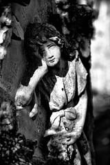 Ben ritrovato, angelo caro. (drugodragodiego) Tags: bagolino valledelcaffaro vallesabbia provinciadibrescia lombardia italy angel cemetery sadness sculpture arte blackandwhite blackwhite bw biancoenero pentax pentaxk1 k1 pentaxdfa2470mmf28 hdpentaxdfa2470mmf28edsdmwr
