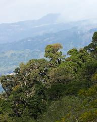 Costa Rica - Los Quetezales (Rez Mole) Tags: costa rica los quetezales