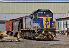T377 sits on the SSR odd wagons out of their broad gauge rollingstock (bukk05) Tags: t377 railpage:class=7 railpage:loco=t377 rpauvictclass4 rpauvictclass4t377 emd8567cr g8b wagons explore export engine emd electromotivediesel railway railroad railpage rp3 rail railwaystation railwaystations train tracks tamron tamron16300 trains yard photograph photo loco locomotive horsepower hp grain flickr freight diesel tclass station summer 2018 southernshorthaulrailroad ssr australia canon60d canon cityofgreaterbendigo cfcla chicagofreightcarleasingaustralia victoria vr victorianrailway vline victorianrailways bendigo northbendigo centralvictoria workshop broadgauge bg clyde clydeengineering