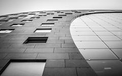 Architecture of Rotterdam (tomaszbaranowski007) Tags: markthal rotterdam holland nederland tamron2470 perspective detail details contrast highcontrast nikond5500 d5500