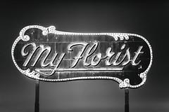 My Florist (Thomas Hawk) Tags: america arizona myflorist phoenix us usa unitedstates unitedstatesofamerica bw florist neon fav10 fav25 fav50