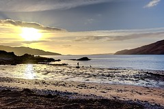 Doggy time! (vincocamm) Tags: scotland highlands skye isleofskye glenelg bernera winter december sunny sun sea water beach rocks dogs silhouette orange blue green nikon d5500 wide reflection bright pebbles sand sunset bordercollies seaweed