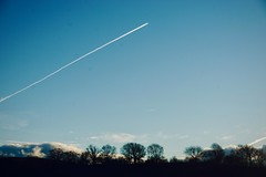 362/365: transatlantic (Michiko.Fujii) Tags: blue blueskies winterlight winterskies linesoflight vapourtrails diagonal ascend climb lookup lookingatthesky upthere upintheclouds uphigh lightanddark lighttrails skyhigh skies skiesthatsigh skywards skygazing northernskies