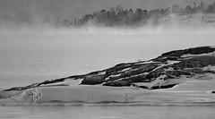 IMG_0062 (www.ilkkajukarainen.fi) Tags: uunisaari helsinki visit travel travelling blackandwhite mustavalkoinen monochrome winter talvi merisumu mersavut suomi finland finlande eu europa scandinavia sea mer water vesi kallio niemi rocks kivet