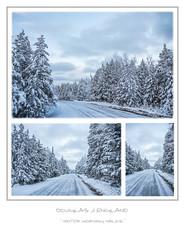 winter morning walks (D J England) Tags: djenglandphotography sigma24105mmf4dgoshsma douglasjengland brucepeninsula ontario dje canoneos5dmkiii southernontario djengland thebruce tobermory haybay