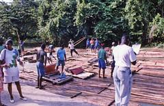 Rafting at Rush Hour (HarveNYC) Tags: jamaica 1992
