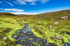 Land of Moss (azhukau) Tags: iceland thakgil creek water stream moss green landscape sky travel tranquilscene quiet silence beautyinnature clouds stones