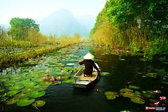 Vietnam Landscapes. (Travel Center UK) Tags: cheapflights travelcenteruk travelphotography vietnam autumn river holidays flightsonline explore nature