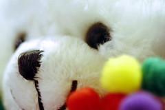 Mon Ours en peluche (Christian Chene Tahiti) Tags: canon 6d macromondays toy fuzzy fuzzytoy ours peluche picktwo museau poil auckland blanc rouge vert jaune couleur colour hmm macro nouvellezélande newzealand bokeh closer closeup