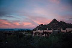 (JawshBeavz) Tags: scottsdale az arizona four seasons travel party explore desert whatever cactus troonnorth unitedstates us