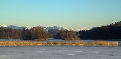Freiheit (Renata1109) Tags: wasser eis see seeham outdoor blau berg berge mountain bayern idylle natur sonne winter insel baum bäume tree trees sun