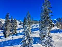 Winter at Kaiser mountains near Kufstein, Tyrol, Austria (UweBKK (α 77 on )) Tags: österreich winter snow ice cold tree forest mountain kaiser kaisergebirge slope white blue sky alpine alps kufstein tyrol tirol austria europe europa iphone