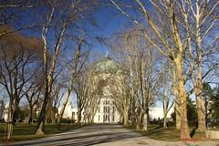 IMG_8387 (Pfluegl) Tags: wien vienna zentralfriedhof graveyard europe eu europa österreich austria chpfluegl chpflügl christian pflügl pfluegl spring frühling simmering