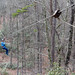 North Carolina: Mountains to Coast 2019