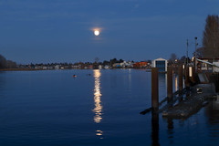 079:365-March 20-Full Moon Rising (karendunne337) Tags: fraserriver canonmirrorless moon bluehour 3652019 ladner reflections kayak