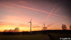 Waimes, ce 14-02-2019 (Lцdо\/іс) Tags: waimes belgique belgium belgie sun sunset gold golden orange hour travel eolienne nature naturelle eifel fagnes fagnard lцdоіс soleil coucher sunny