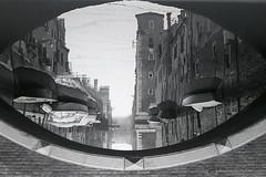 riflessi (michelesalvador) Tags: penta mx biennale ilford bianco e nero epson expression 1600 pro