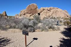 Discovery & Split Rock Trail Junction (daveynin) Tags: marlena sign junction trail california nps desert mojavedesert sculpture rocks rock