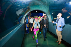 Kronos Incorporated (KronosANZ) Tags: 0431110377 aquarium australia imageeight incorporated kronos mckenna photographer photography shaun shaunmckenna victoria shaunmckennacom aus