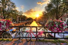 Amsterdam, Netherlands.. (Travel Center UK) Tags: amsterdam netherlands sunrise bridge bicycles spring travelcenteruk tourism holidays flowers colourful water reflection clam beautifulnature
