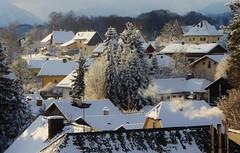 P1140373 Wintersonne (Traud) Tags: germany deutschland bavaria bayern winter sonne dächer schnee snow