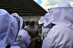 DSC_9753-61 (jjldickinson) Tags: nikond3300 107d3300 nikon1855mmf3556gvriiafsdxnikkor promaster52mmdigitalhdprotectionfilter longbeach bixbyknolls longbeachbeekeepers outreach class beeprepared insect bee honeybee apismellifera dickbarnes