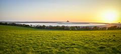 fin de journée sur la baie (fred9210) Tags: baie country sunset normandie zeiss grass green blue calme saintmichel mont france nikon couchant