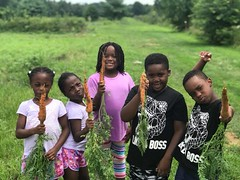 Carrot finding at Pennypack Farm  2018