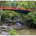 Japan - Hiroshima (Itsukushima)