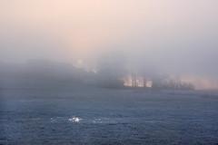 Mystical sunrise IMG_3766 (pappleany) Tags: pappleany sonnenaufgang nebel landschaft winter sunrise fog landscape franken frankonia bayern bavaria deutschland germany