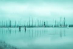 The shallows (alideniese) Tags: icm intentionalcameramovement alideniese blur water landscape waterscape melbourne australia