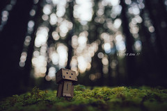 190112_TrailWalk_244.jpg (dtchan) Tags: toys 24mm sonya7iii trailwalk danbo gmaster figure