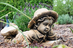 Garden Andrews G9 garden view RAE_2496.jpg (st peters gardens armidale) Tags: 2018 plants nature australia gardenart gardenweekend towngarden northerntablelands garden newengland plant gardenview flora urallashire stpeters plantae leecerd gardenweekendflickr nsw church uralla places events