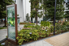 Privately Owned Public Space in Central Tokyo (michaelvito) Tags: japan tokyo privatelyownedpublicspace transitorienteddevelopment urbanplanning urbanism walkability placemaking thirdplace streetphotography 日本 東京 都市計画 街づくり まちづくり アーバニズム likeafishinwatercom