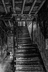 Fading in Despair (Bernai Velarde-Light Seeker) Tags: stairway stair monochrome blackandwhite oldquarters decaying rotting bernai velarde panama urban urbanexploration centralamerica