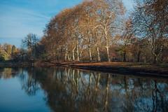 Tranquillity (explored 2019/1/28) (Tom Levold (www.levold.de/photosphere)) Tags: autumn bäume fuji herbst landscape landschaft natur nature pond teich trees x100f herten schlosspark