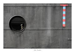LYON - CHAT (DidLam69) Tags: lyon chat nb bw noiretblanc blackwhite bateau peniche hublot rond