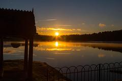 River Tamer Sunrise 28th September 2018 #7 (JDurston2009) Tags: pentillie pentilliecastle tamarvalley cornwall rivertamar
