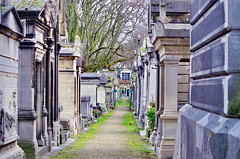 120 - Paris - Février 2019 - le cimetière de Montmartre (paspog) Tags: paris france cemetery cimetière friedhof cimetièredemontmartre montmartre février februar february 2019