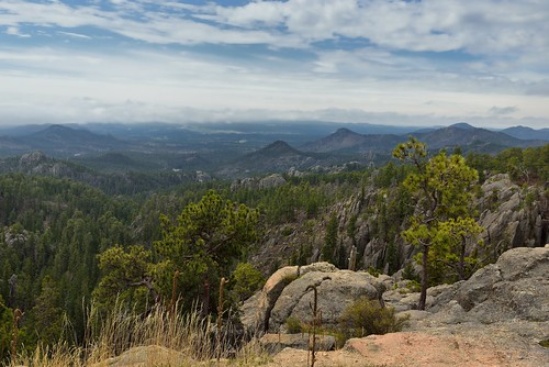 Hilltops, Forest and Mountains That Stretch to the Far off Horizon (Custer State Park)