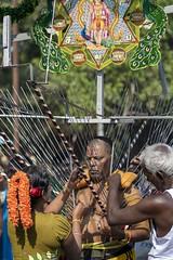 mortification (Patrick Doreau) Tags: portrait asiatique asian birman myanmar birmanie bagan beauté beauty fête hindoue burma homme man couleurs colors hindou sacrifice souffrance thaipusam