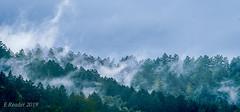 Upslope Fog (Greatest Paka Photography) Tags: fog cloud atmosphere weather upslopefog watervapor ground forest mountain droplets nature risingterrain marvel outdoor