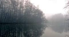 (farmspeedracer) Tags: autumn lake nebel fog mist 2016 november novembre silence cold sky island tree