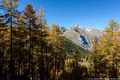 DSC_5216 (www.figedansletemps.com) Tags: laghidelrutor valdaoste italia italie lac lake rutor glacier montblanc montagne mountain alpes alps coucherdesoleil leverdesoleil sunset sunrise automne autumn altitude relief bivouac rando hiking
