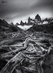 Pointing to Fitz Roy (alberana) Tags: fitzroy chalten elchalten argentina america patagonia andes mountains trees clouds sky ice snow blackandwhite landscape outdoor