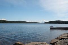 DSC05208 (MSchmitze87) Tags: schweden sweden dalsland kanu canoeing see lake