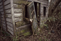 it's the little things (History Rambler) Tags: old tiny mini house playhouse abandoned decay lost forgotten leaf