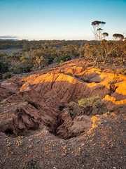 a gilded age (liam.jon_d) Tags: australia australian baldina baldinacreek billdoyle cliff cliffs conservationpark cp evening gilded goldenlight mallee midnorth redbanks redbanksconservationpark sa southaustralia southaustralian stitch stitched sunkissed sunset themallee themidnorth wide wideangle