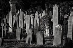 Standing room only. (Steve.T.) Tags: blackandwhite bnw cemetery graves graveyard bromptoncemetery westlondon victorian nikon d7200 sigma18200 crowded overcrowded london death londonlife fulham headstone