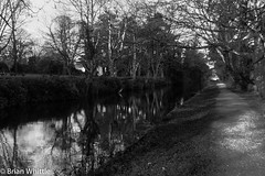 IMGP9328 (Brian H Whittle) Tags: blackwhite leedsliverpoolcanal rufford canal
